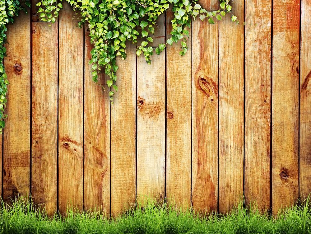Grass Brisbane Timber Fencing